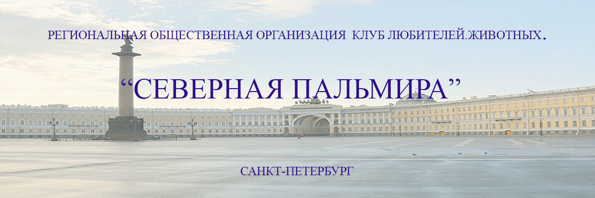 """ОФИЦИАЛЬНЫЙ САЙТ КЛЖ """"СЕВЕРНАЯ ПАЛЬМИРА"""